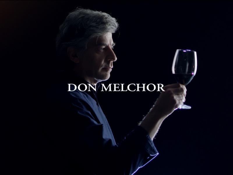 Viña Don Melchor – The beauty of composition