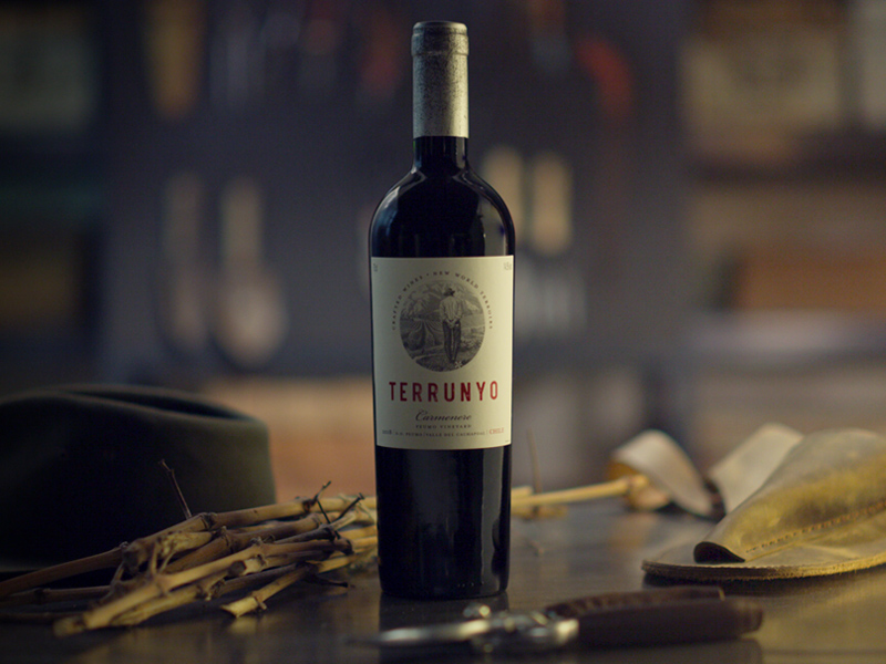 Terrunyo – Carefully crafted wines from new world terroirs