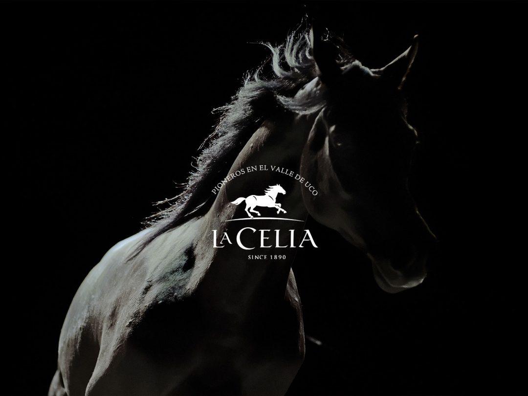 La Celia – Unbridled Excellence